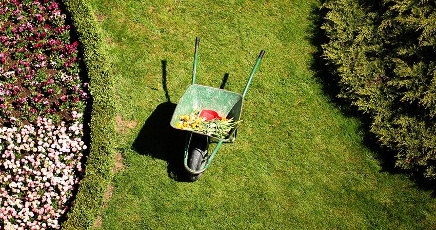 garden-maintenance-fi